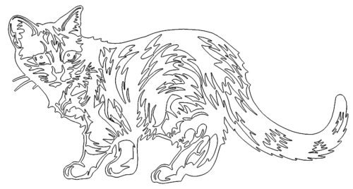 Scheue Katze - Cat