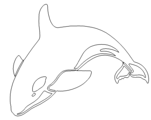 Orka - Orca