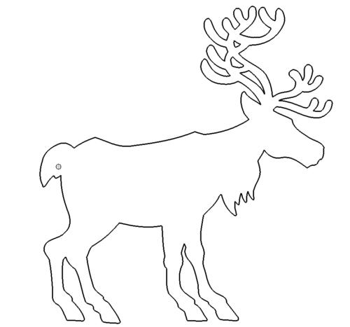 Renntier - Reindeer