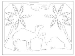 Bild Palmen Sonne Tiere