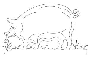 Schwein auf Wiese - Pig on meadow