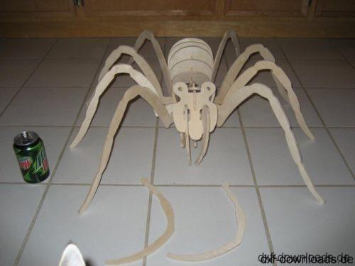 Spinne 3D Modell - Spider 3D model
