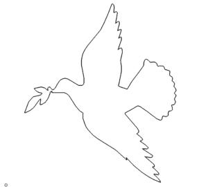 Taube - Dove