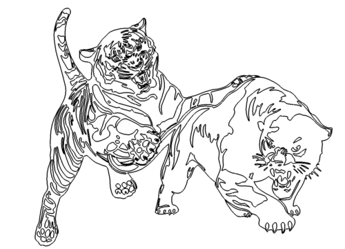 tiger-attack. Tiger attackiert - Tiger attack