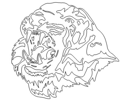 Tiger Kopf - Tiger Head