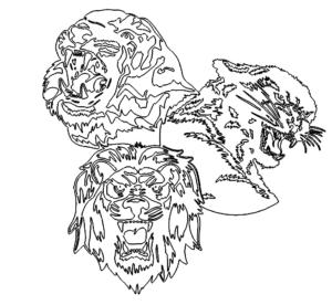 Tiger Panther Löwe
